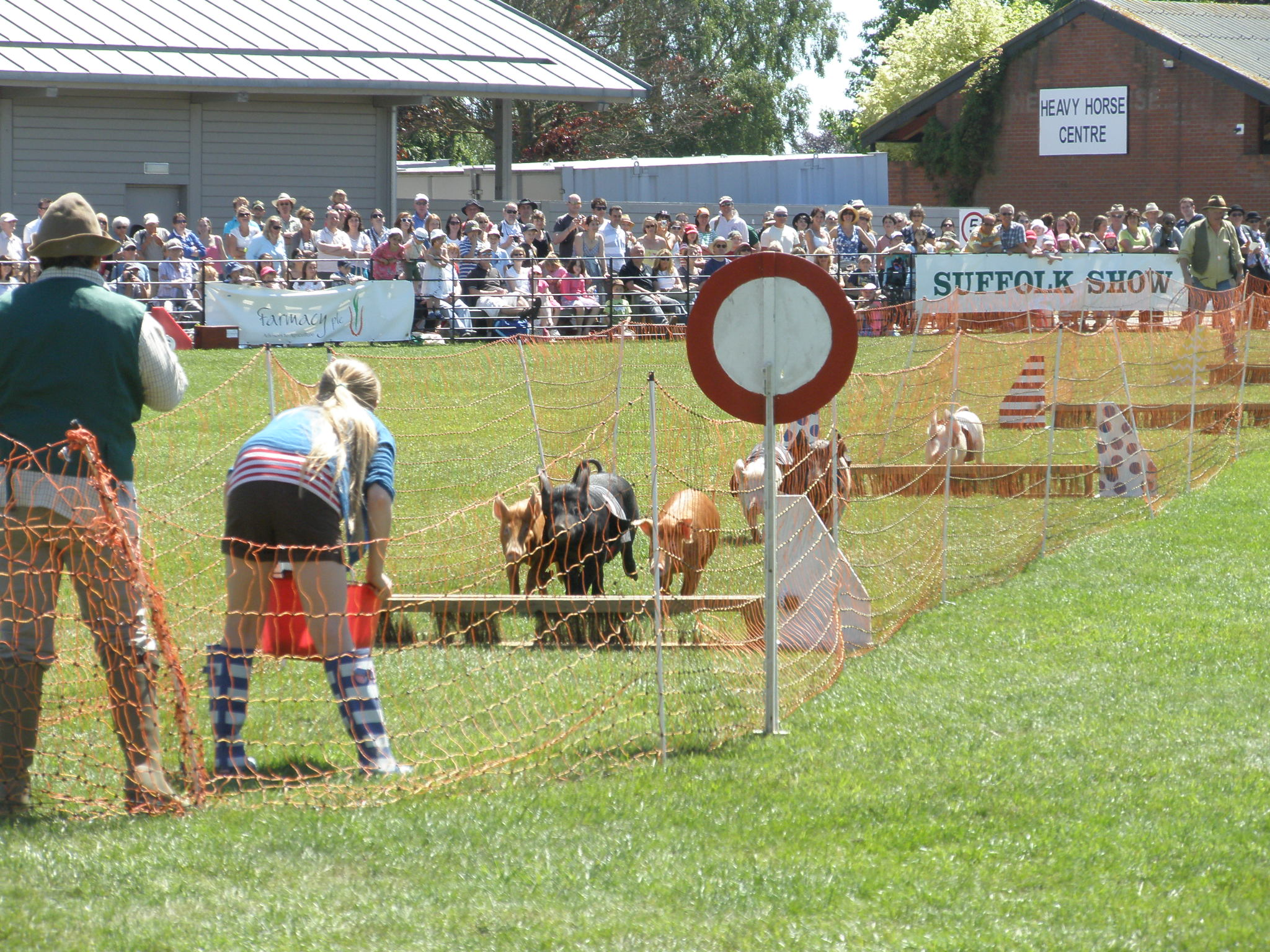 The Suffolk Show